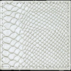 Dessous de verre serpent blanc
