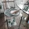 Etoile de mer décorative en porcelaine